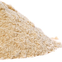 Garlic Powder Organic / 250g
